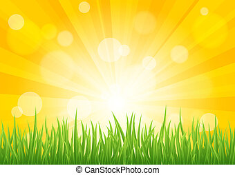 Bright vector sun effect with green grass field - Bright...