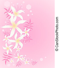 jasmine background - an illustration of an arrangement of...