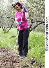 Mid aged woman raking - Mid aged woman working, raking in...