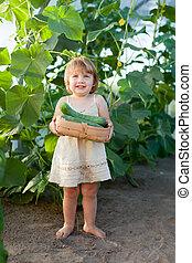 anni,  2, cetriolo, bambino, ragazza, Scegliere