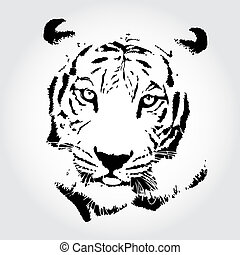 Tiger drawing - Tiger sketch isolated backgrond.