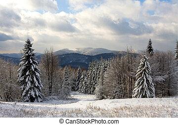 Winter in Bieszczady, Poland