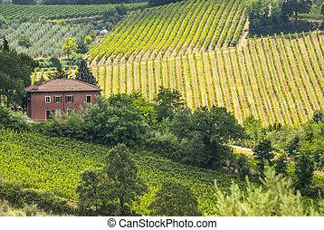 Farm near San Gimignano (Tuscany)