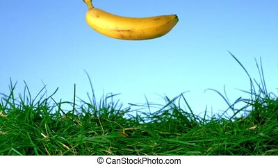 Banana falling on grass against blue background in slow...