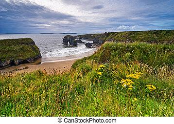 Cliffs in Ireland - Cliffs over Atlantic Ocean in County...