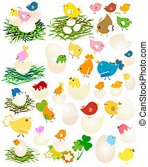 Easter nests with colorful birds and eggs. Vector...