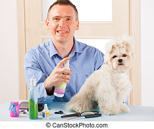 Dog grooming - Smiling man grooming a dog purebreed maltese