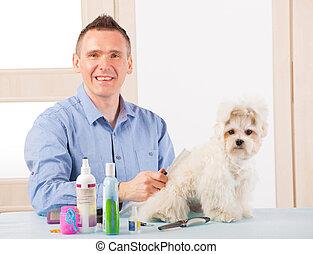 Dog grooming - Smiling man grooming a dog purebreed maltese.