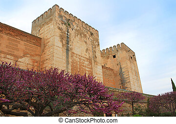 Alcazaba, Granada Spain - View of sprintime blossoms near...