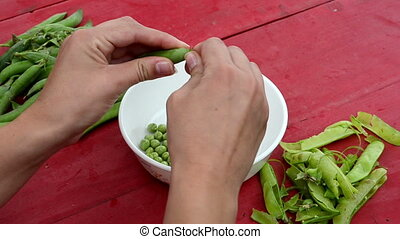 woman shell peas - closeup woman hands shell green pease in...