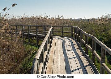 Wetlands being crossed by a  wooden footbrige