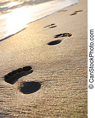 beach, wave and footsteps at sunset time - sand beach, wave...