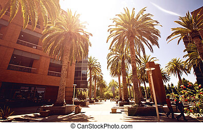 Silicon Valley streetview during sunny day