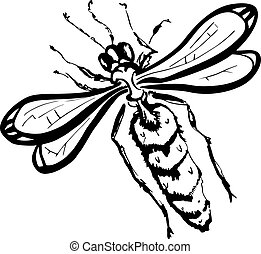 Wasp (black and white) - Illustration of wasp over white...