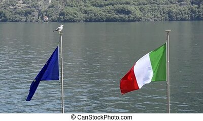 Flags of Europe and Italy