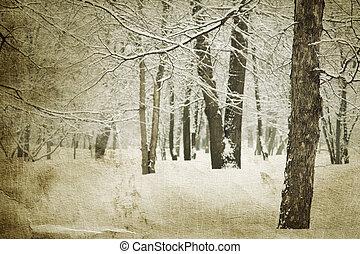 vendimia, invierno