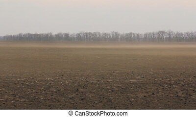 Dust wind on the field to horizon