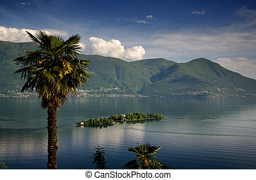 Brissago islands on a alpine lake with a palm