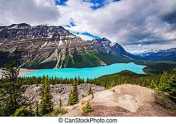Peyto Lake - Icefields Parkway, Banff, Alberta, Canada