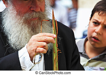 Old Orthodox Jew with the boy chooses Lula - Bnei Brak -...
