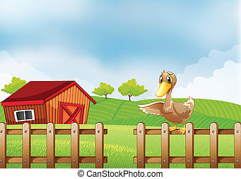 A duck at the farm - Illustration of a duck at the farm