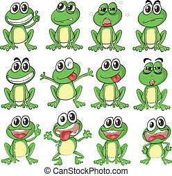 Different faces of a frog - Illustration of the different...