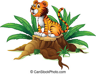 A big tree with a tiger