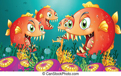 Piranhas,  seahorse, otoczony, grupa, głodny