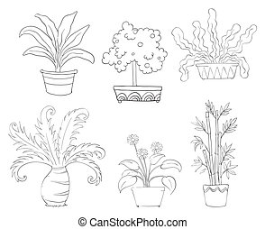 Six different kinds of plants