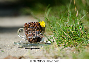Coffee beans in a transparent coffee cup with flower