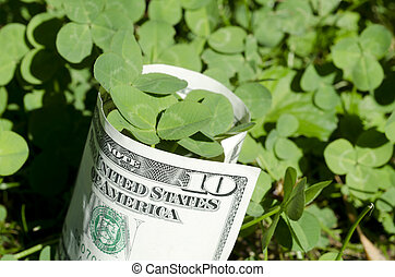 The bill of ten dollar with three leaf clover
