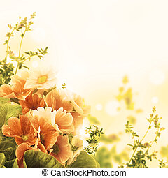 A spring primrose is in a bouquet, floral background