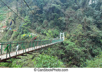 Bridge of Kanchenjunga Nation Park . That is trail for...