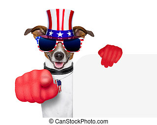 usa american dog - american dog pointing with big finger at...