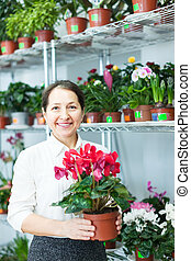 woman in flower shop with Cyclamen