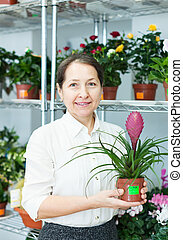woman in  shop with Tillandsia