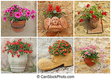 collage with garden flowers in vase
