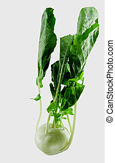 FRESH KOHLRABI - fresh kohlrabi with leafs,isolated