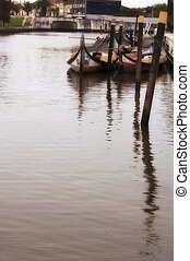 Aveiro, pesca, Barcos