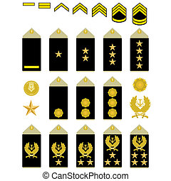 Insignia of the Iranian Army - Military ran