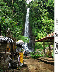 Bali: impressive Gitgit waterfalls, surrounded by beautiful...
