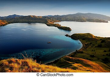 Komodo island national park - Komodo island in indonesia...