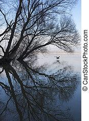 Mirror - Beautiful mirror riverbank, near the danube