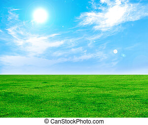 Summer and Green field with blue sky