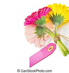 Colorful gerbera flowers with gift tag isolated over white