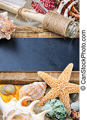 Marine frame with colorful sea shells