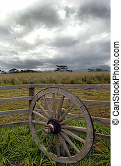 Wagon Wheel - Old wagon wheel on farm.