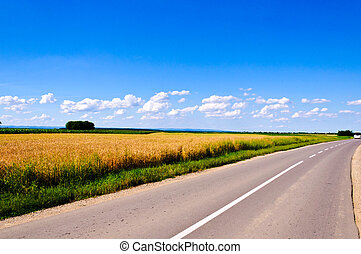 fields and roud - Field and clouds of Vojvodina region
