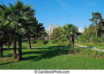In city park