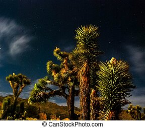 NighT CLouDS 2013 - LighT PainTinG iN ThE Hi-DeserT,CaLi